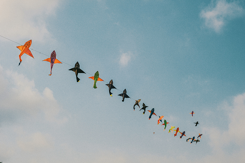 Kites in the sky, hopeful feeling