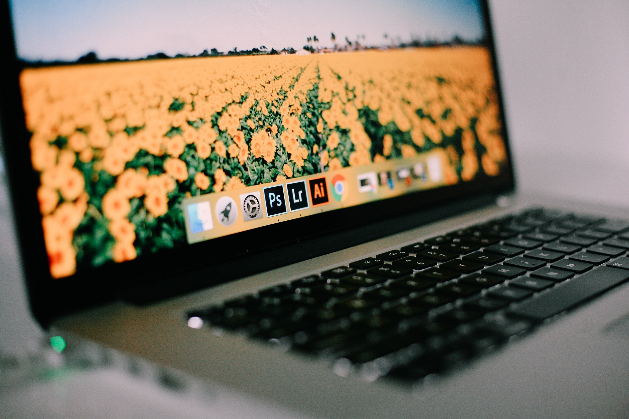 laptop with adobe software rising stars